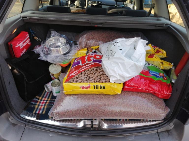 Dary uczniów Zespołu Szkół w Kościelcu dla bezpańskich zwierząt ze schroniska
